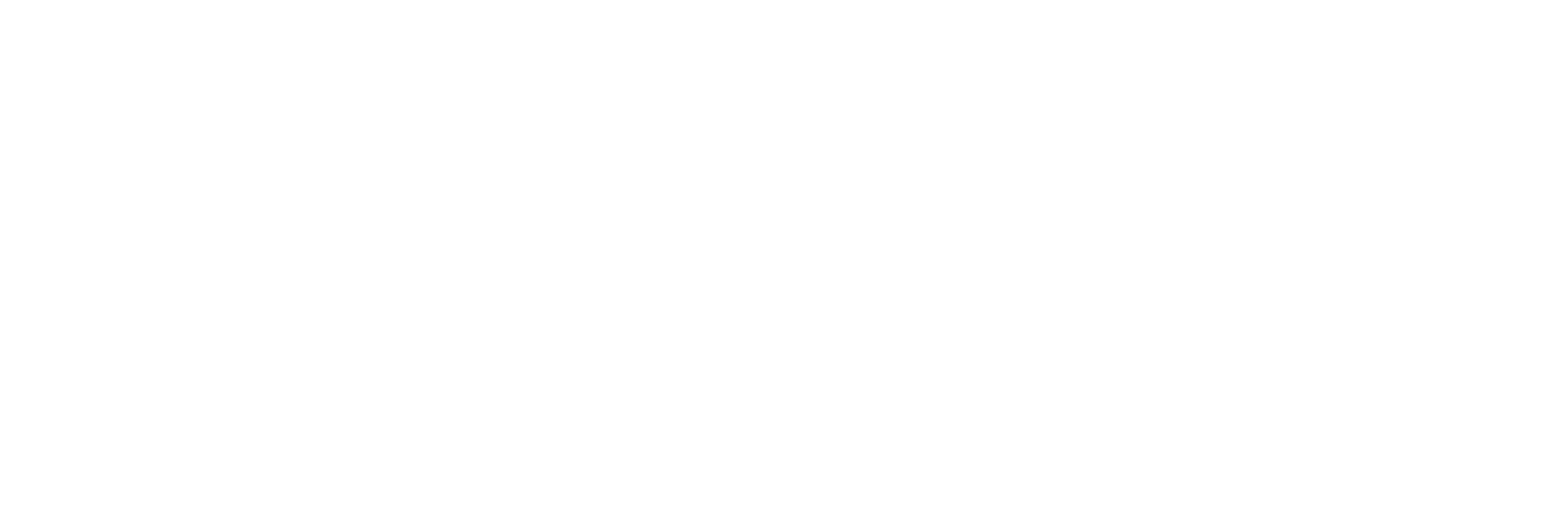 Influencer Marketing Professionals